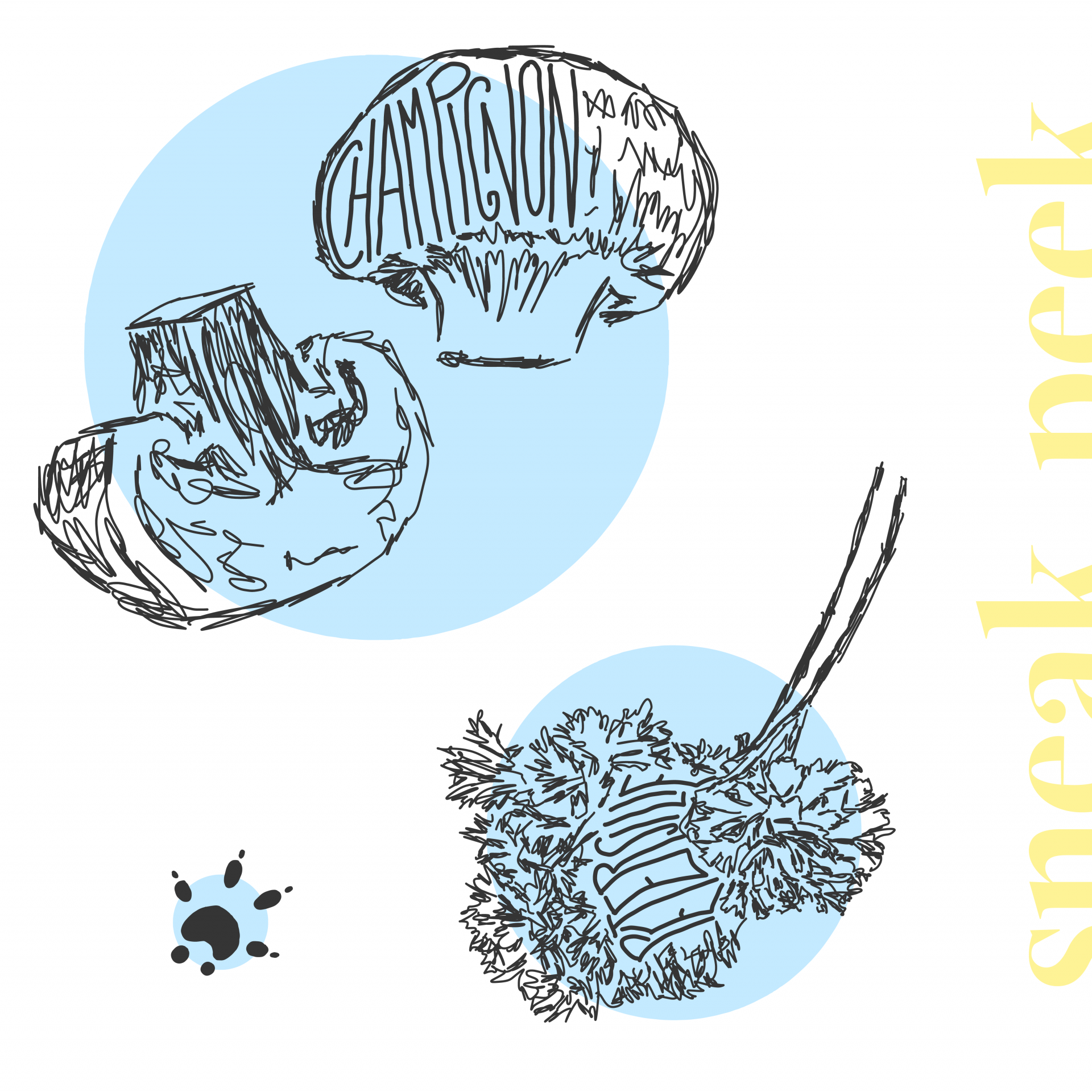"""grafikdesign, quadrat, hintergrund weiß. rechts hochgestellt steht in gelb """"sneak peek"""", angeschnitten. links oben im bild befindet sich ein großer blauer kreis, darauf eine skizze von zwei champignons: einer ist angeschnitten, im anderen steht das wort """"champignon"""". links unten ist ein kleiner kreis mit dem abdruck einer kleinen rattenpfote. rechts daneben ist ein mittelgroßer, blauer kreis, auf dem die skizze von zwei petersiliezweigen handgezeichnet ist, mittig in der pflanze steht das wort """"petersilie"""""""