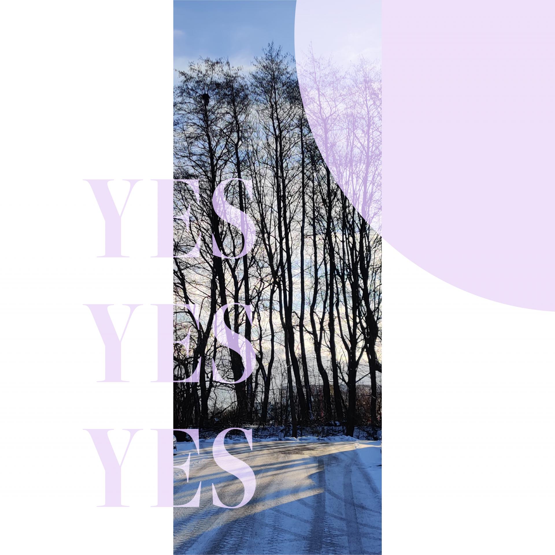 """grafikdesign, quadrat, hintergrund weiß. rechts oben ist ein drittel eines pinken kreises, links steht übereinander drei mal """"YES"""" in derselben farbe. im hintergrund ist mittig ein streifen eines fotos von einer winterszene, schnee, blauer himmel, sonne und schwarze baumsilhouetten"""