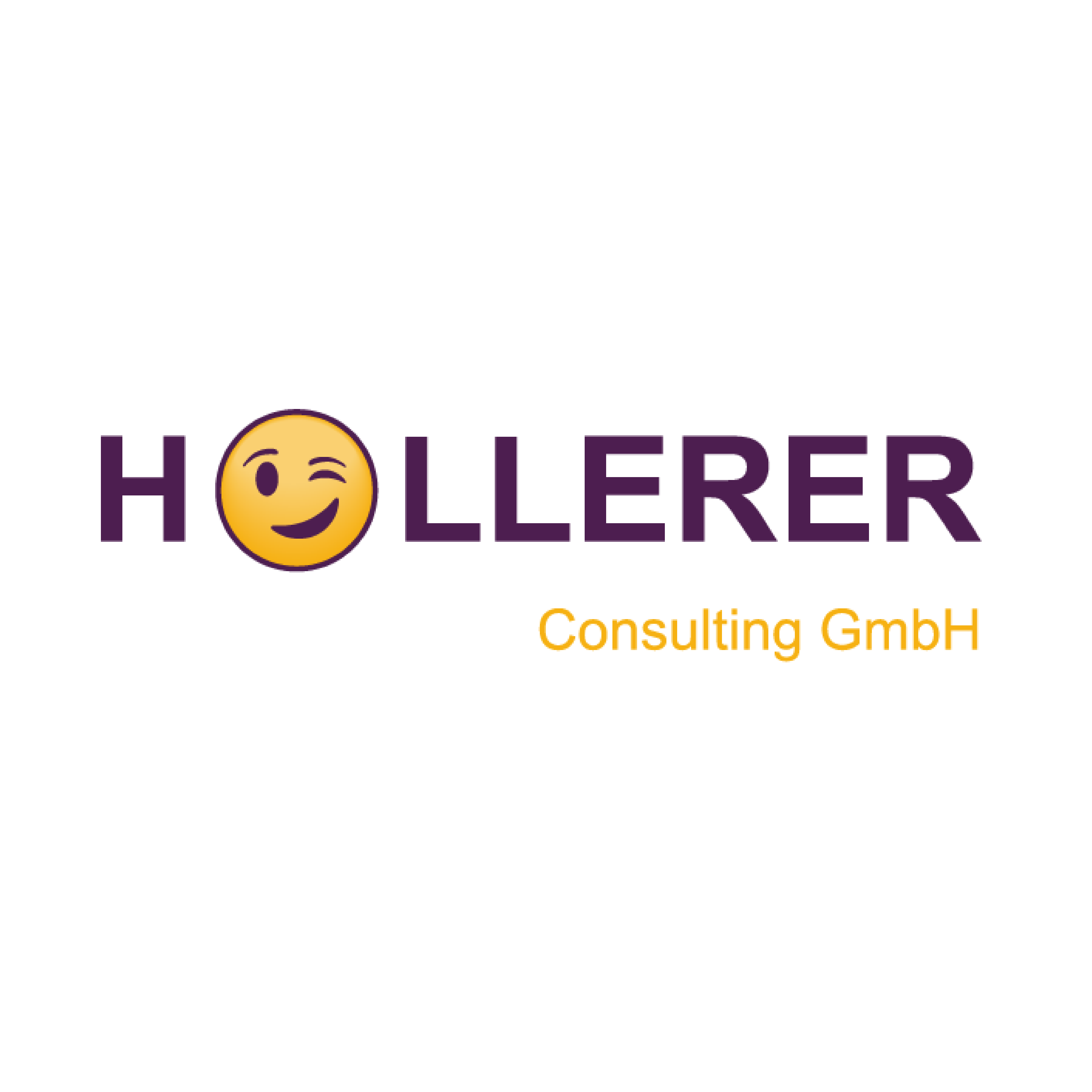 """logo hollerer consulting gmbh mit zwinkersmiley als """"o"""""""